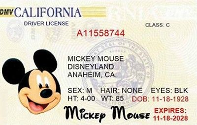 Mr Mouse Driving License