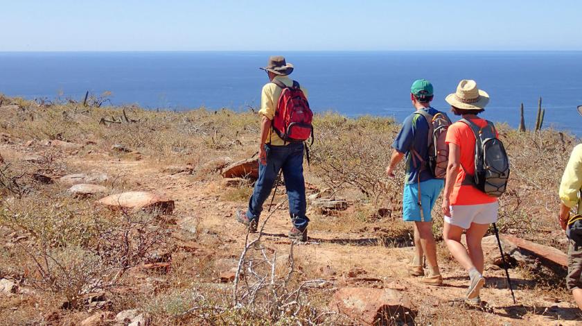 REI-Adventures-Hiking | AardvarkCompare.com