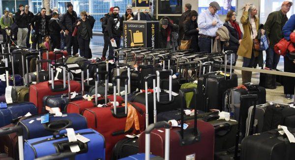 Baggage Insurance | AardvarkCompare.com