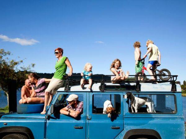 Travel Survival | AardvarkCompare.com