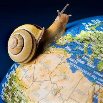 AARP-Travel-Slowly | AardvarkCompare.com
